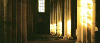 La lumière exaltée et les 32 chemins